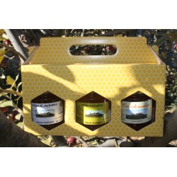 Miele tipico sardo, 250 gr., gift box x 3