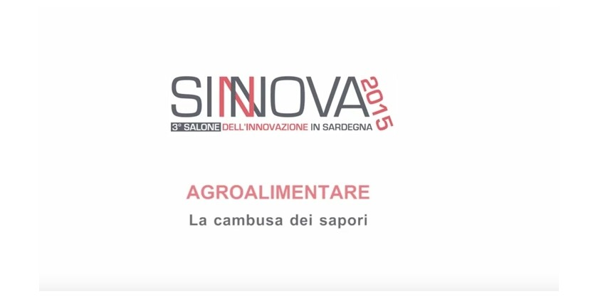 Video SINNOVA 2015